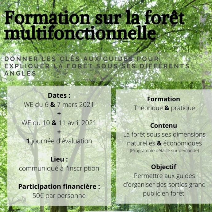 Formation sur la forêt multifonctionnelle - Flyer promotionnel - Publications Parc Naturel Ardenne Meridionale